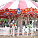 Carousel-St-Augustine